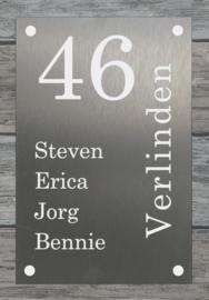 Naambordje voordeur RVS 20x30cm