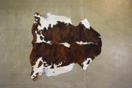 Goedkope multi, tricolor of bonte koeienhuid A2