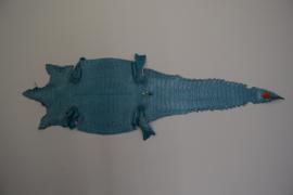 Krokodillenleder turquoise .