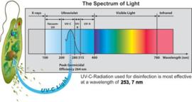 Steamteq Limatic Carbon UVC