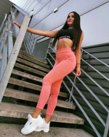 CARPATREE SEAMLESS PEACH LEGGING