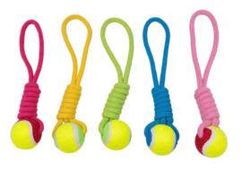 Jack and Vanilla Kalanga touw met tennisbal