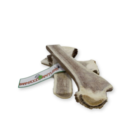 Easy Antler XL