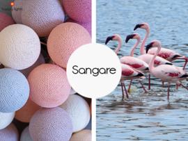 HAPPYLIGHTS FAVORIET | Sangare