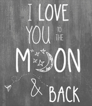 JOTS WENSKAART 'I love you to the moon...'