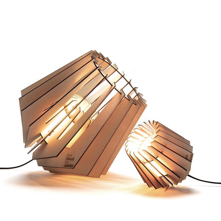 VAN TJALLE EN JASPER LAMP| Mini-spot en Spot-nik!