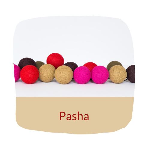 HAPPYLIGHTS FAVORIET| Pasha