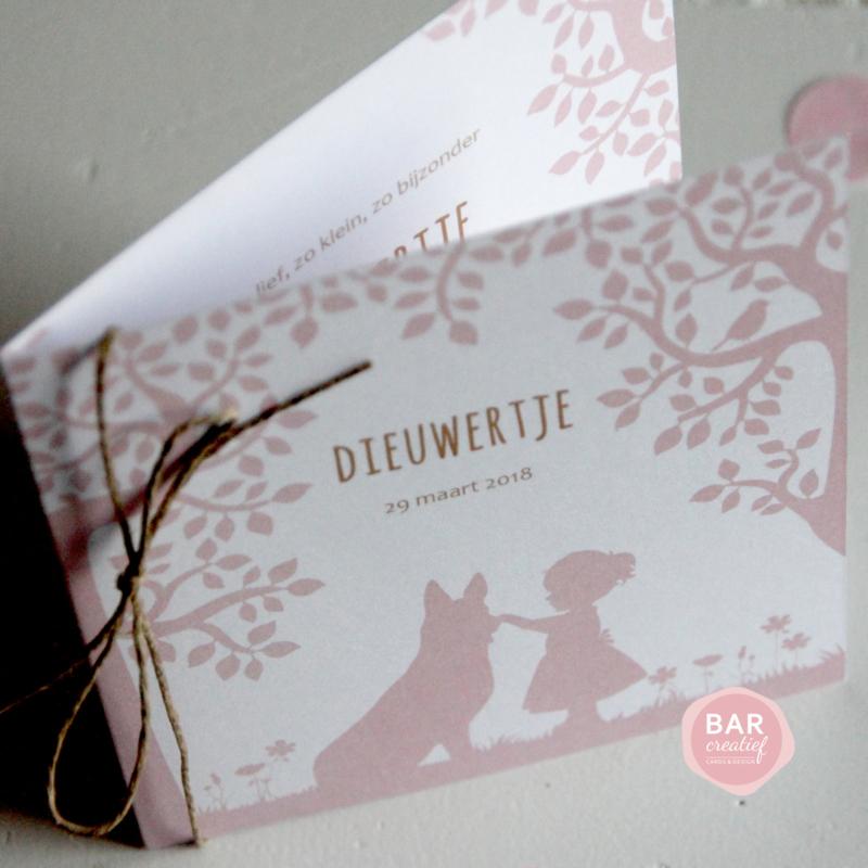 Geboortekaartje Dieuwertje
