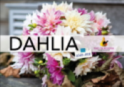 Dahlia catalogus 2020-2021