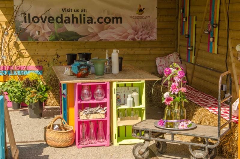Dahlia Workshop 13 Augustus 2019 van 14:00 tot 16:30 uur
