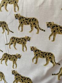 Biker short cheetahs