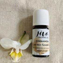 Jiva organic CINNAMON oil