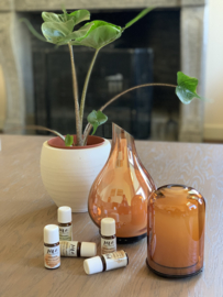 Glazen aroma diffuser Dom Amber
