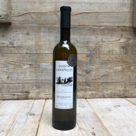Vinho Verde Alvarinho 2016