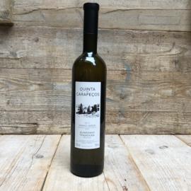 Vinho Verde Alvarinho/Trajadura 2017