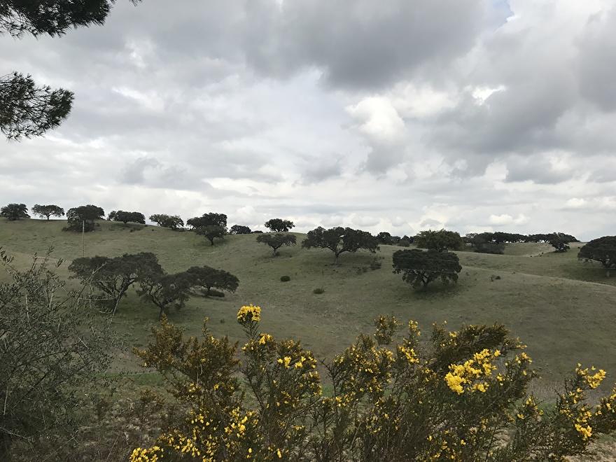 Mijn reis langs onze wijnboeren in Portugal