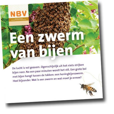 Een zwerm van bijen (40 stuks)