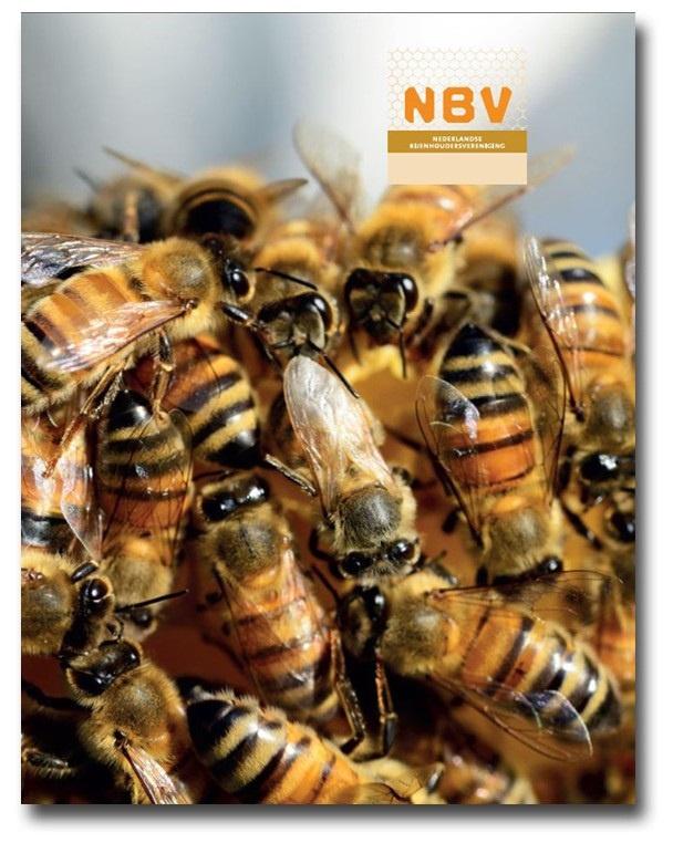 NBV Cursusmap