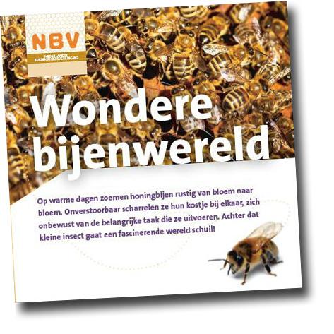 Wondere bijenwereld (40 stuks)