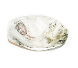 Protea Bowl