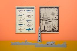 Schoolplaat haaien