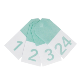 Gifttag Mint