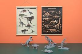 School Poster Dinosaurs