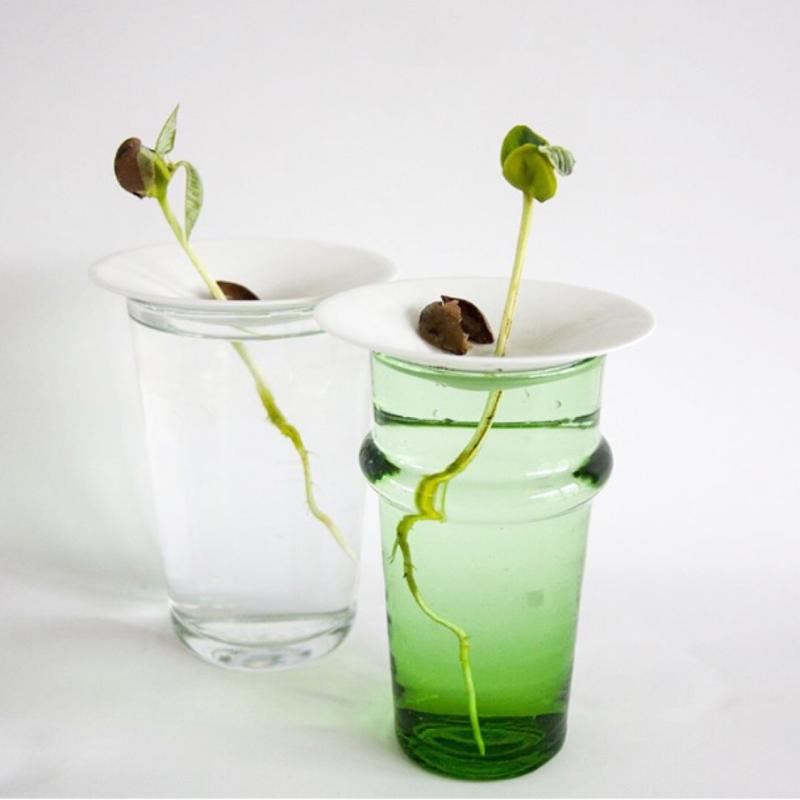 Kweekschotel van Sprout  Grow Up in maat small