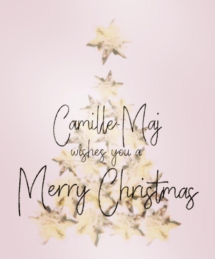Camille-Maj fijne feestdagen Goudsmid Zutphen