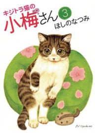 PLUM CRAZY TALES OF TIGER STRIPED CAT 03