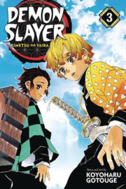 DEMON SLAYER KIMETSU NO YAIBA 03