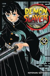 DEMON SLAYER KIMETSU NO YAIBA 12