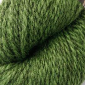 Blåne Gressgrønn