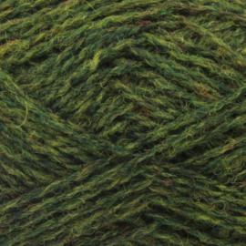 Spindrift - 147 Moss