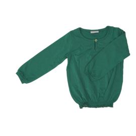 Froy & Dind AW20 - Blouse Roxy Evergreen