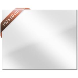 Spiegel infrarood verwarmingspaneel 900