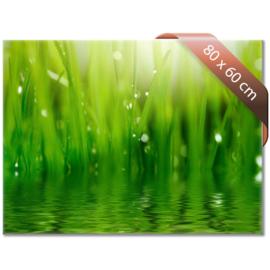 Glazen infrarood verwarmingspaneel 540