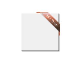 VITRAMO infrarood panelen