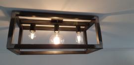 plafond lamp   lamp industrieel  robuust