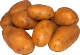 1kg Aardappel Frieslander kruimig Workum