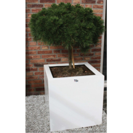 Style Pot H60/50/40 X B60/50/40 X D60/50/40 CM (Meerdere kleuren)