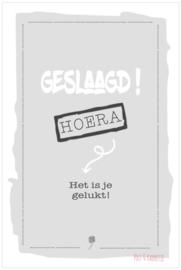 Postkaart ||Geslaagd! Grijs