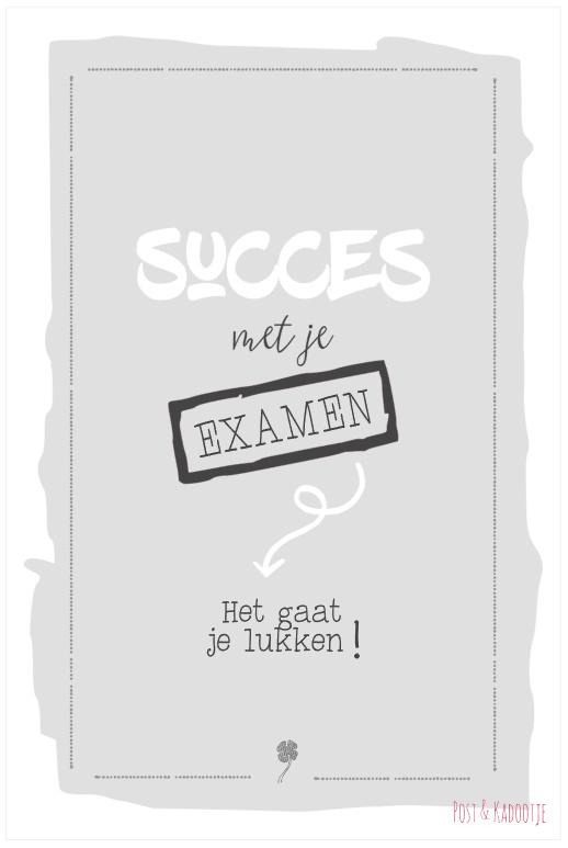 Postkaart Succes met je examen, grijs