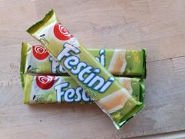 Festini peer