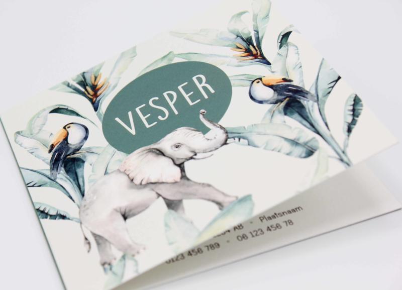 Geboortekaartje Vesper