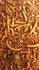 Insectenpate (Beaphar)