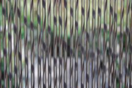 SIENNA2 120x230cm grijs-transparant