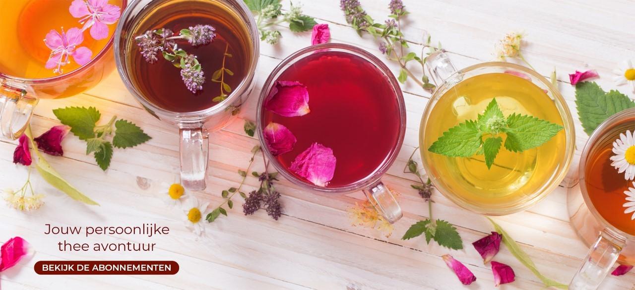Jouw persoonlijke thee avontuur