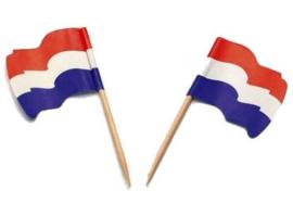 Kaasprikker wapper Hollands - 144 st
