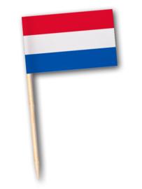 vlagprikker recht -doosje 144 stuks